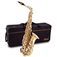 Beginner / intermediate Elkhart 100AS Eb Alto Saxophone Outfit by Selmer