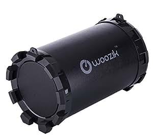 Amazon.com: WOOZIK SPK-BT-S12 Subwoofer Portable Loud