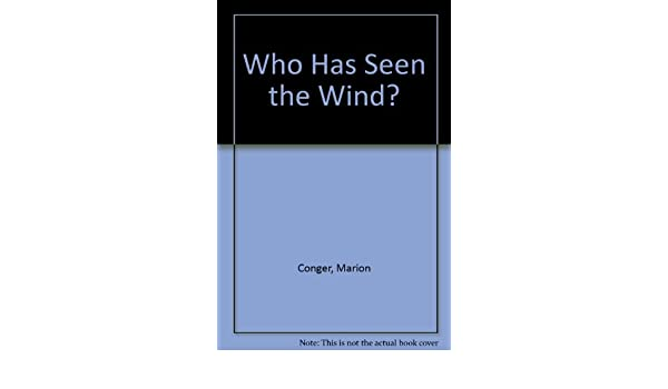 who has seen the wind book