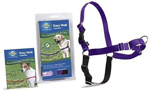 PetSafe Harness Medium Large PURPLE