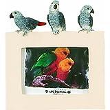 E&S Pets 35316-10 Small Bird Frames