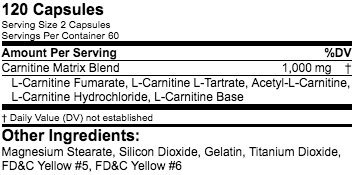 Infinite Labs Carnitine MTX Capsules Supports Weight Management + Energy + Metabolism Boost, 120 Capsules