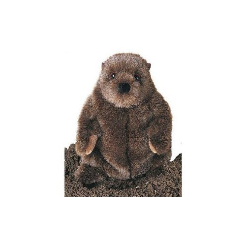 Douglas Cuddle Toys Plush Chuckwood Groundhog 11