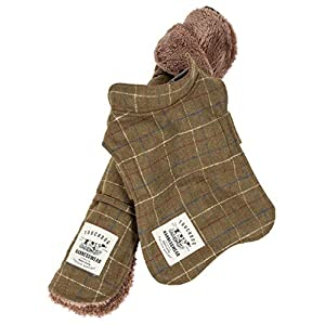Touchdog ® 2-in-1 Windowpane Plaided Dog Jacket with Matching Reversible Dog Mat, Small, Green Click on image for further info.