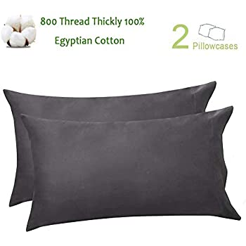 Amazon Com Stwiener 1 000 Thread Count Pillow Cases 100