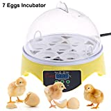 7 Eggs Incubator, Incubator Hatcher, Egg Incubator, Poultry Hatching for Chickens 7 Egg Automatic Digital Mini Egg Incubator Hatcher Temperature Control (7 Eggs)