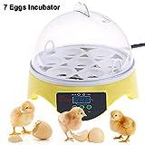 7 Eggs Incubator, Incubator Hatcher, Egg Incubator,Poultry Hatching forChickens 7 Egg Automatic Digital Mini Egg Incubator Hatcher Temperature Control (7 Eggs)