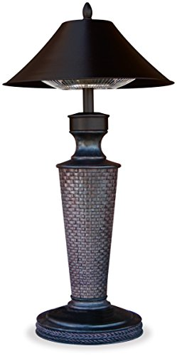 (Endless Summer EWTR890SP Patio Heater, 19.7