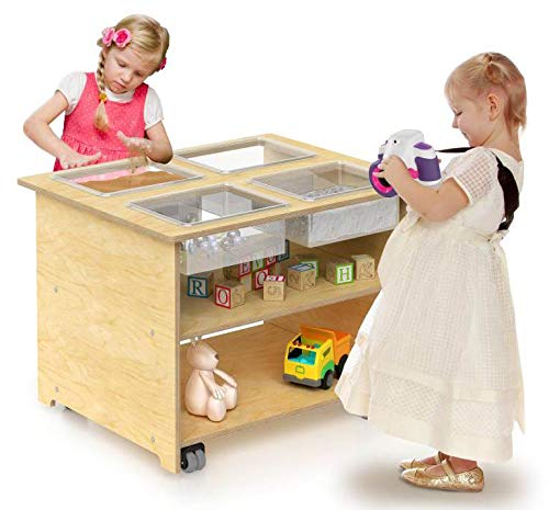 Whitney Brothers Wooden Mobile Sensory Table with Trays and Lids, Interactive Learning Table for Children