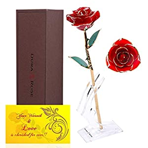 DuraRose Authentic Rose with Stand and Love Card, Everlasting Rose Stem Dipped in 24k Gold – Best Gift for Loves Ones. Ideal for Valentine's Day, Mother's Day, Anniversary, Birthday, (Red)