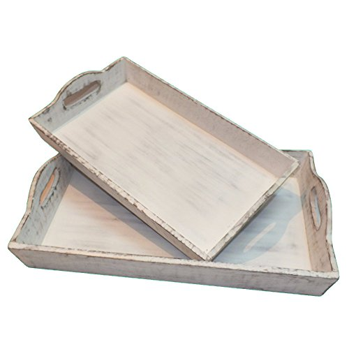 Buy benzara beautiful crafted tray in set of two