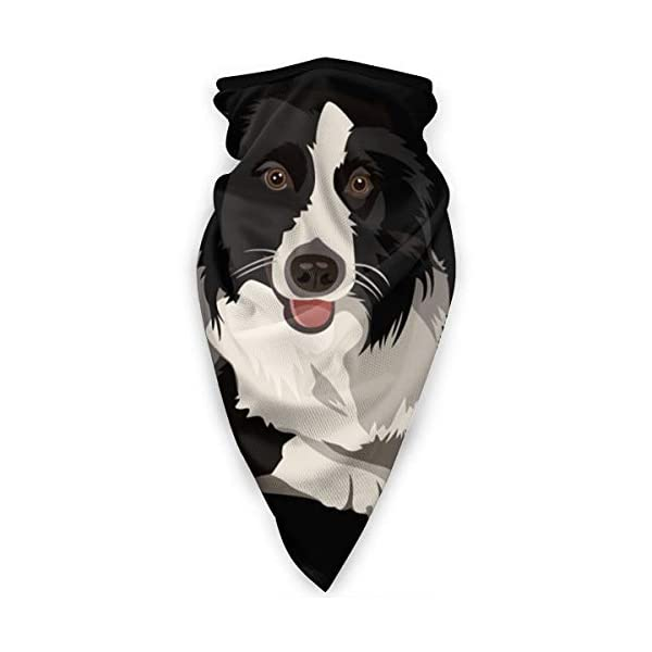 Border Collie Neck Gaiter Warmer Windproof Face Mask Scarf Outdoor Sports Mask 1