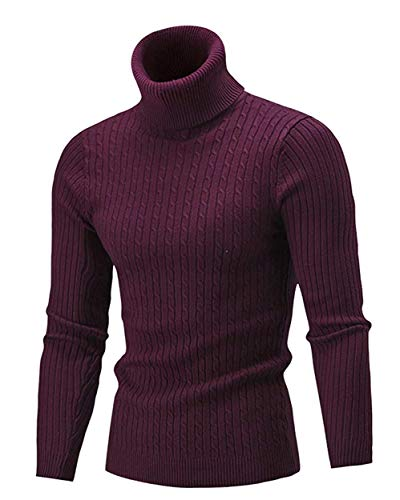 Cameinic Mens Casual Slim Fit Turtleneck Pullover Sweaters with Twist Patterned Wine ()