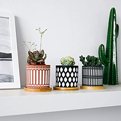 POTEY 054401 Cement Plant Pots for Small Plants Succulent Cactus - Concrete 3.1 Inch Planters Indoor with Drainage Holes(Set of 3, Plant NOT Included): Garden & Outdoor
