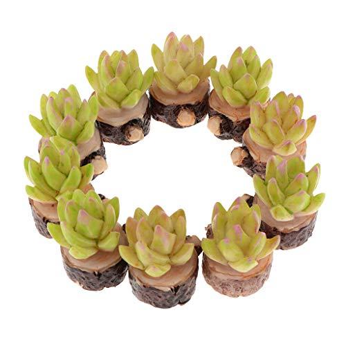 NATFUR 10 Pieces Miniature Succulent Plants for 1/12 Dollhouse Home Decor