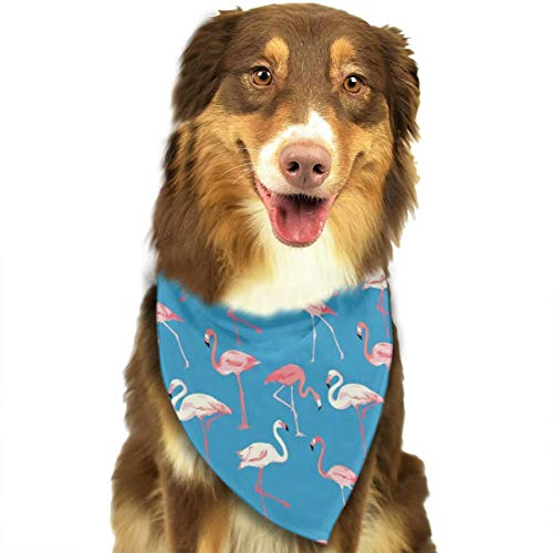 Pet Scarf Dog Bandana Bibs Triangle Head Scarfs Flamingo Blue Background Accessories for Cats Baby Puppy ()