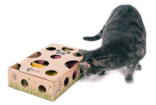 Cat Amazing Best Interactive Cat Toy Ever Treat Maze