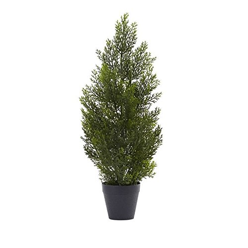 Nearly Natural Green 2 Foot Mini Cedar Pine Tree
