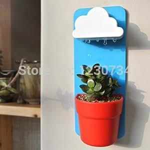 Rainy Pot desktop planting, Creative Wall desktop bonsai Indoor green clean air radiation, Pot + Soil + seeds, Mini houseplant