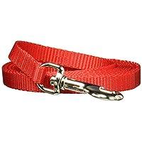 Coastal Pet - Correa de entrenamiento de correa de perro de nylon (6 pies, largo x 3/8 de pulgada de ancho), rojo