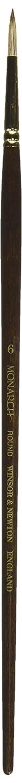 X-Long Size 6 Winsor /& Newton Monarch Filbert Long Handle Brush