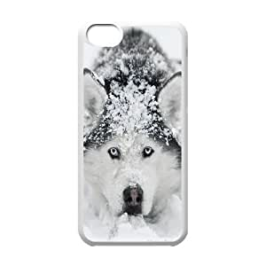 Cute dog blue eyed husky dog Hard Plastic phone Case Cover For Iphone 5c JWH105362