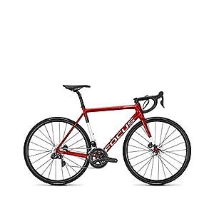 Focus Izalco Max Disc Ultegra Di2 | Bicicleta Carbono Carretera
