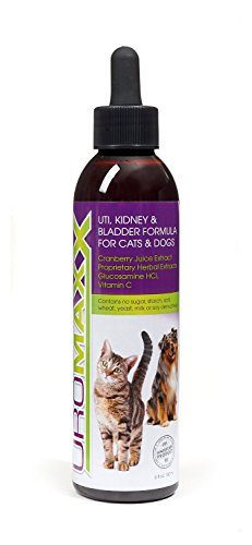 (UroMAXX Urinary Tract, Kidney & Bladder Formula for Cats and Dogs, 6 oz Bottle)
