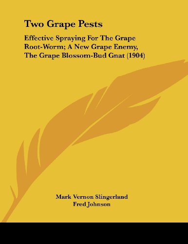 Red Bud Blossom - Two Grape Pests: Effective Spraying For The Grape Root-Worm; A New Grape Enemy, The Grape Blossom-Bud Gnat (1904)