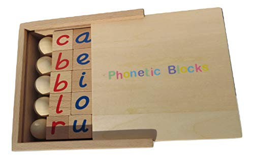 Montessori Phonetic Reading Blocks with A Wooden Box for Early Childhood Learning Ages 3 and -