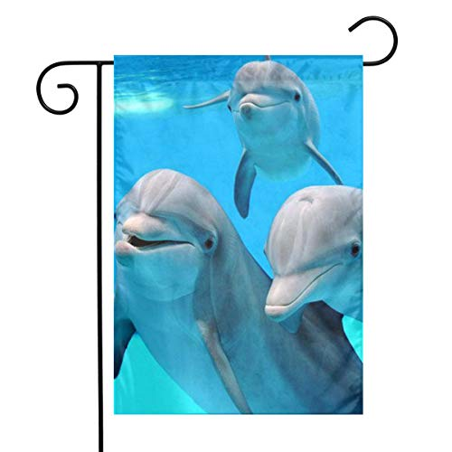 - DALIAN Dolphin Family Home Garden Flag Vertical Spring Summer Decorative Rustic/Farm House Small Decor Yard Flags Set for Indoor & Outdoor Decoration 12 X 18 Inch
