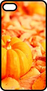 Orange Pumpkin Harvest Black Plastic Case for Apple iPhone 5 or iPhone 5s