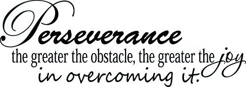 (23x8) Perseverance the greater the obstacle the greater the joy in overcoming it. Wall Vinyl Decal Quote Art Saying by Ideogram Designs