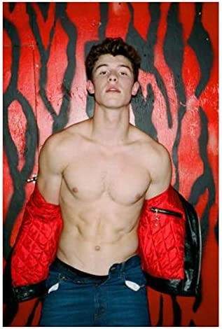 XuFan Carteles e Impresiones Shawn Mendes In My Blood ...