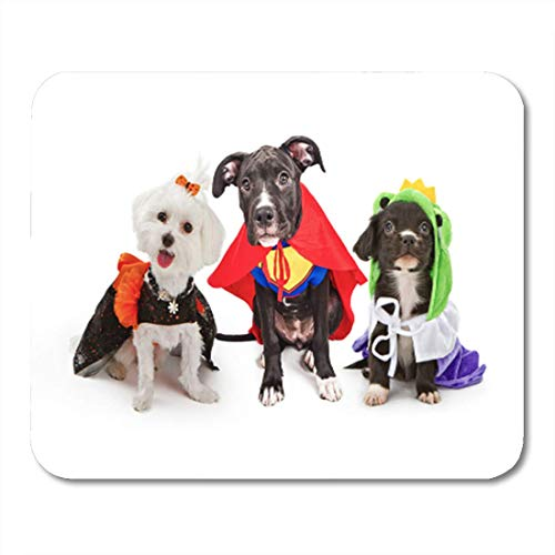 HZMJPAD Three Cute Little Puppy Dogs Dressed Up in Halloween Mouse Pad 8.6 X 7.1 -