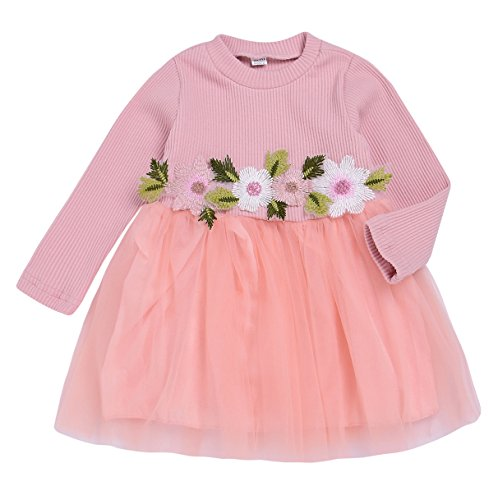 Jersey Occasion Special Dress (Mini honey Toddler Kids Girls Fall Jersey Dress Long Sleeve Floral Tulle Cap Tutu Dresses Outfit)