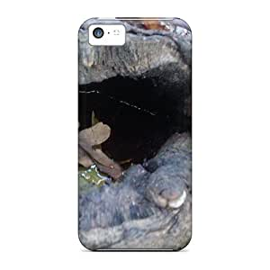 ConnieJCole Design High Quality A Forest Tree Winth Water Inside Cover Case With Excellent Style For Iphone 5c