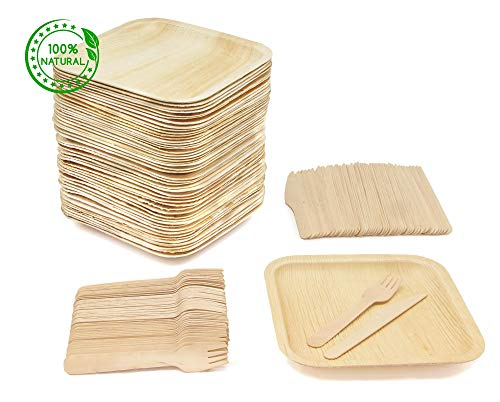 (Party Pack of 150 Eco-Friendly Dinnerware - 50 Disposable 8