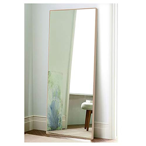(CrossROBBIN Thin Frame Floor Mirror, 65