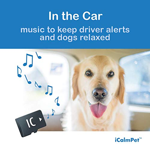 - iCalmDog in The Car | Calms Dogs with Travel Anxiety While Keeping Driver Alert | Music by Through a Dog's Ear | Micro SD Sound Card