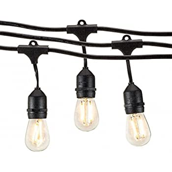Amazon Com Outdoor String Lights 48 Ft With Standard