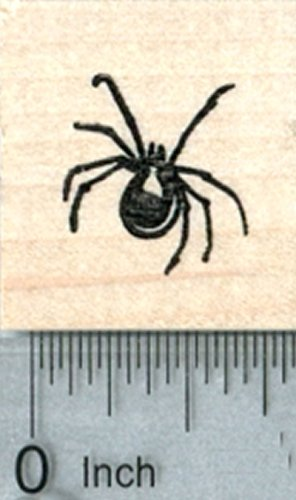 (Small Spider Rubber Stamp, Halloween Series)
