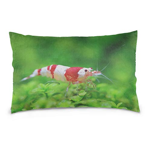 WSNWCY Crystal Red Shrimp Standing On Aquatic Moss Pillow Case Printed Standard Size (20