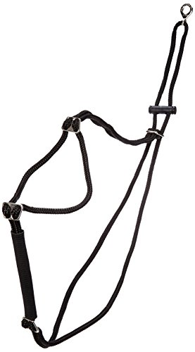 (Coastal Pet Products DCP603326LG Nylon Walk Right Control Dog Harness, Large, Black)