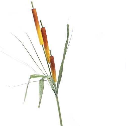 Factory Direct Craft Group of 3 Assorted Burgundy, Orange or Ivory Artificial Cattail Stems for Arranging, Crafting and Embellishing