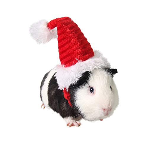 POPETPOP Guinea Pig Costume – Cat Santa Hat Pet Christmas Hat Santa Claus Cap Head Accessories for Rabbit Hamster Guinea Pig Rats Kitten and Small Animals