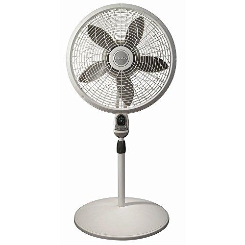 Lasko Desk Fan : Lasko inch remote pedestal fan cook clean enjoy