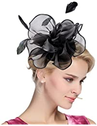 601b69234045d Women s Vintage Flower Feather Mesh Net Fascinator Hair Clip Hat Party  Wedding