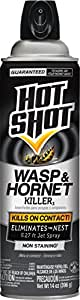 Hot Shot 13415 14 oz Wasp & Hornet Killer Aerosol