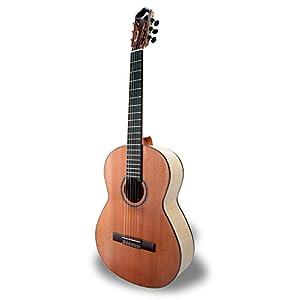 APC Instruments EXO FLA Konzert Gitarre